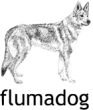 Flumadog - Martina Dietschi-Flury