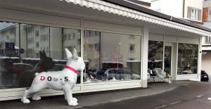 Dog-s Hundepension