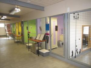Tierheim und Tierpension Furrer, Oberwallis
