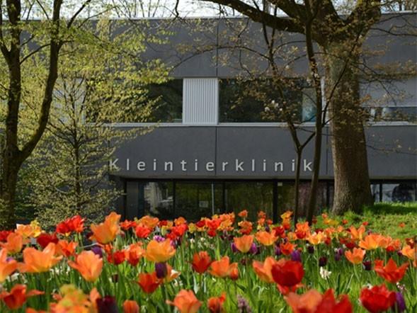 Kleintierklinik Universität Bern